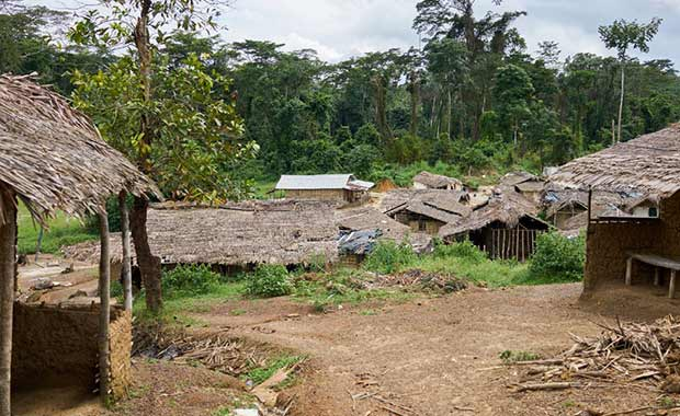 It is incredibly difficult to access many remote communities in Liberia, such as John Logan Town, pictured above. This presents numerous challenges when working to spread information and awareness about how to reduce maternal mortality.